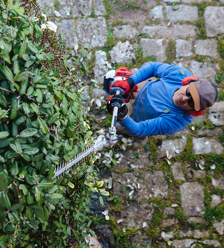 Shafted Hedge Trimmer