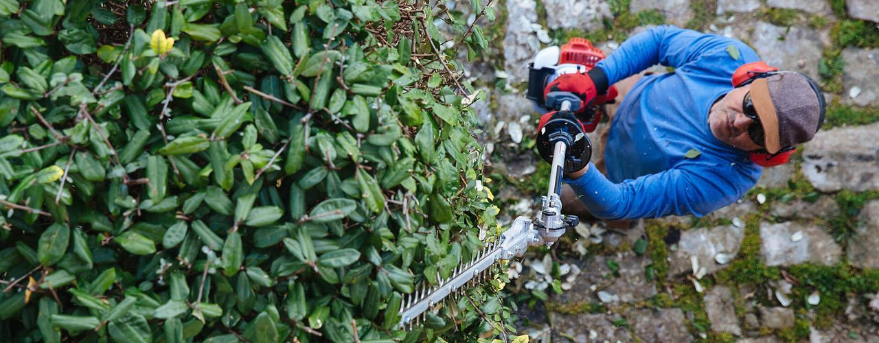 Shafted Hedge Trimmers