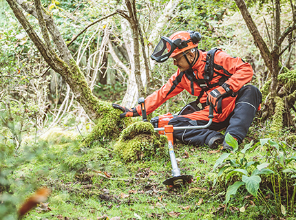 Electric or petrol trimmer or brushcutter?